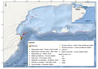 Dhofar map with sightings